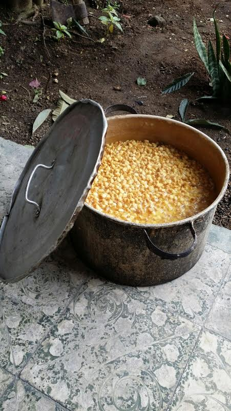 Soaking corn to grind for tortillas.